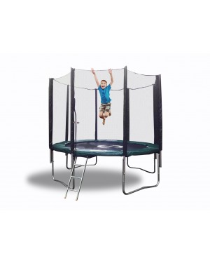 10' Galactic Xtreme EXTRA HEAVY DUTY with Enclosure Safety and Ladder Combo